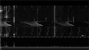 Twenty four hours of RFI on 30 meters.